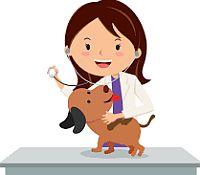 Preporučujemo veterinarima