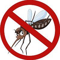 Borba protiv komaraca