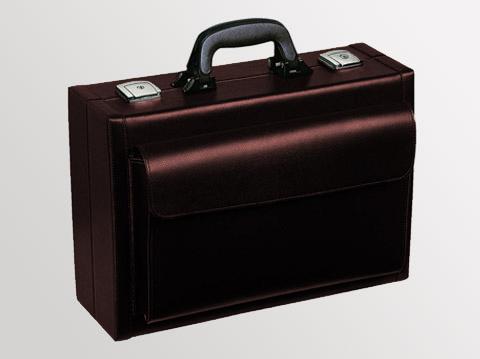 Liječnički kofer Visita | Koža-bordo